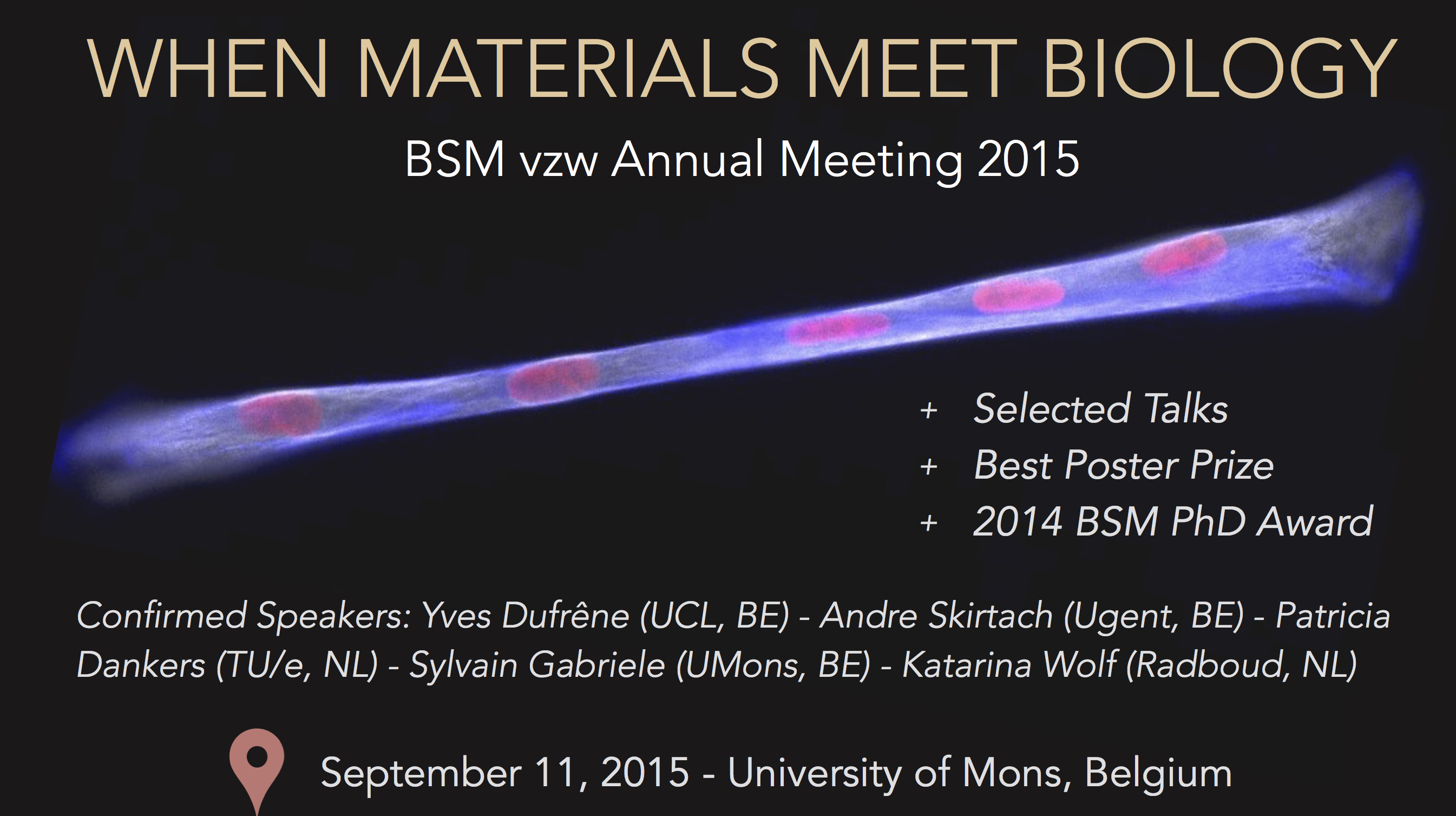 BSM Annual Meeting 2015